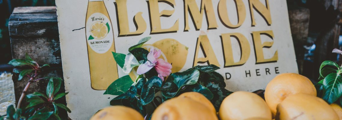 Lemons into lemonade - how I built a successful online business | Krista Goncalves
