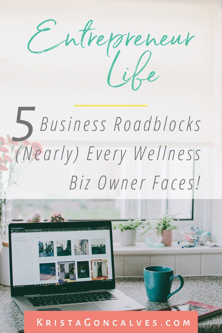 The 5 Business Roadblocks You're Likely Facing as a Wellness Entrepreneur | Krista Goncalves Co.