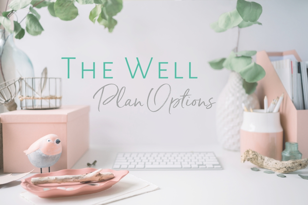 The Well Membership Plan Options | Krista Goncalves Co.